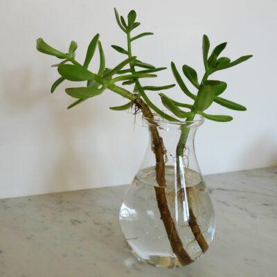 vase en verre recyclé AFFARI